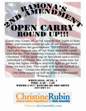 opencarry2010final